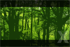 event_forest1X